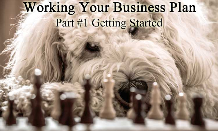BWYSEBLOG_WorkingYourBusinessPlan_Part1_GettingStarted.jpg