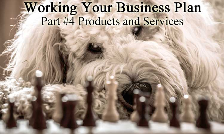 BWYSEBLOG_WorkingYourBusinessPlan_Part4_ProductsAndServices.jpg