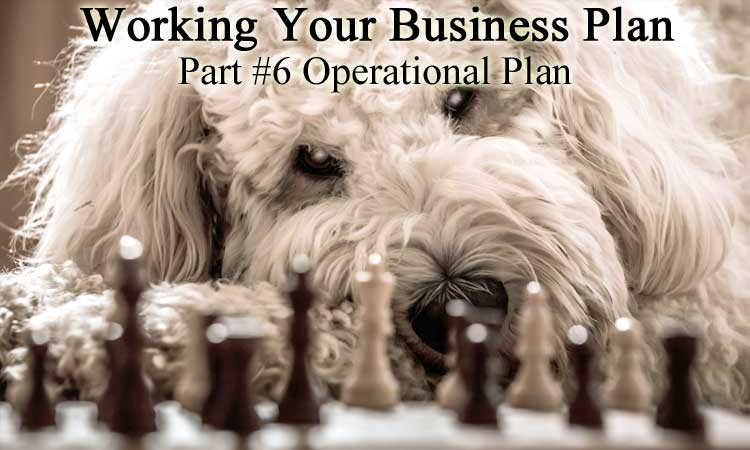 Updating Your Business Plan for 2020 Part 6 - Operational Plan